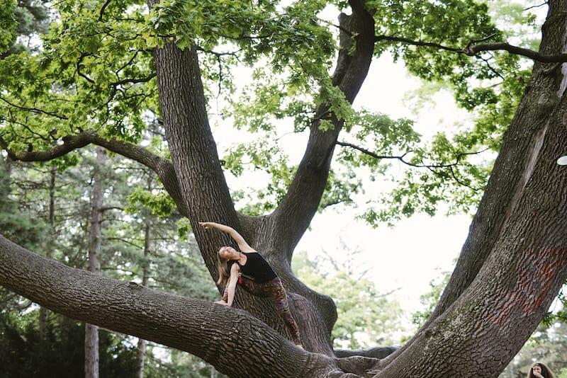 Zwei Äste vom gleichen Baum – Yoga und Ayurveda Urlaub